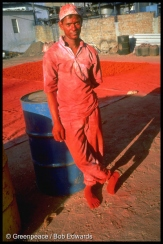 Dye worker, Ankleshwar, Gujarat, India