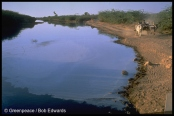 Combined effluent stream from Ankleshwar reaches Narmada river, Gujarat