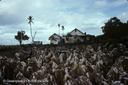 Coral heads, phosphate farming, Ocean Island, Kiribati, South Pacific.