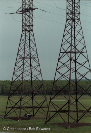 Crops growing under electricity pylons, Republic of Chuvashia, Russia.