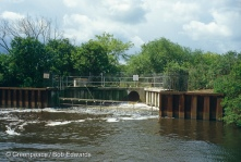 Sewage outfall into Norfolk Broads contains mercury waste from May & Baker, England.