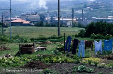 """Garden near the ASER factory near Bilbao, Northern Spain. ASER imports steel dust for recycling. Bilbao, a heavily industrialised city in the Basque region, is now a centre for disposing of imported hazardous wastes using the """"recycling"""" loophole in European Community regulations."""